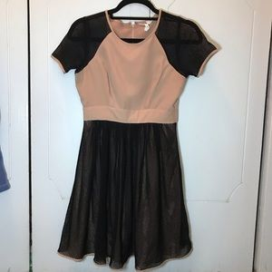 BCBG fit and flare dress
